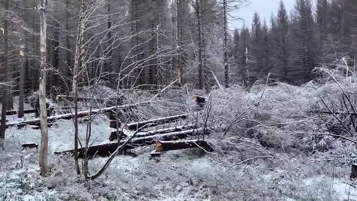 News video: Wintereinbruch im Harz - aber am Wochenende 30 Grad