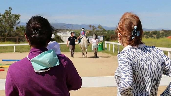 News video: Ein sanfter Therapeut: Wie Pferde bei Coronadepressionen helfen