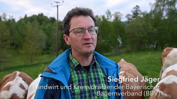 News video: Gefräßige Brummer - Maikäferplage im Bayerischen Wald