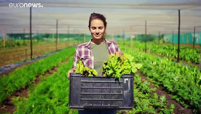 Video: Mikroalgen: gesundes Lebensmittel der Zukunft