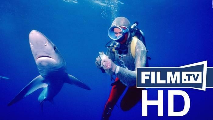 Video: Die Freundin der Haie Trailer Deutsch German (2021)