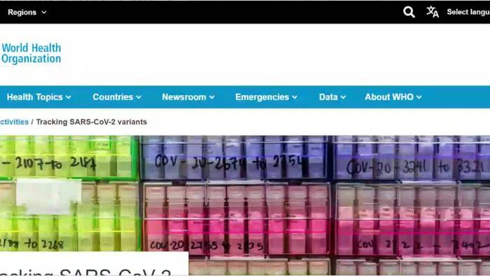 Video: Lambda, Kappa, Gamma: Auch diese Mutationen werden von der WHO beobachtet (1)