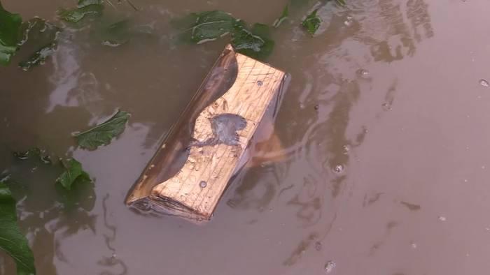 Video: Dramatische Lage: 93 Tote bei Hochwasserkatastrophe
