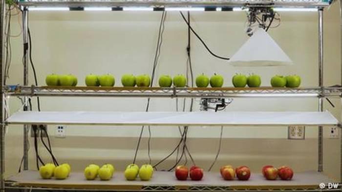News video: Längere Haltbarkeit für Obst und Gemüse