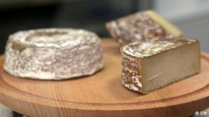 Video: Veganer Käse aus der Schweiz